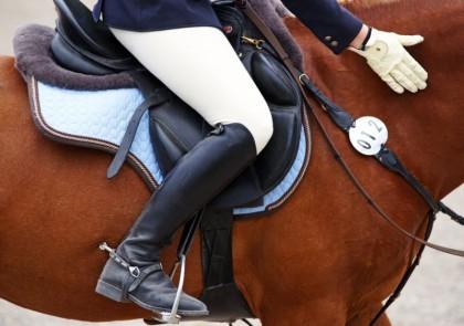 Pferdetextilien